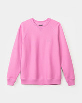 Stussy Stock Raglan Long Sleeve Crew (Pink)