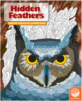Hidden: Feathers Coloring Book