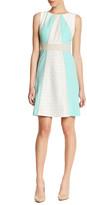 Sandra Darren Lace Colorblock A-Line Dress (Petite)