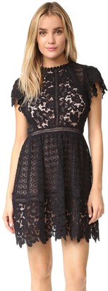 Rebecca Taylor Women's Ss Lace Mix Dress