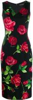 Dolce & Gabbana Rose Print Midi Dress
