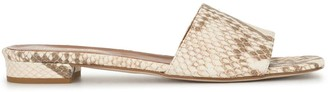 Paris Texas Embossed Snakeskin-Effect Mules