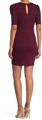 Max & Ash Short Sleeve Knit Sheath Dress