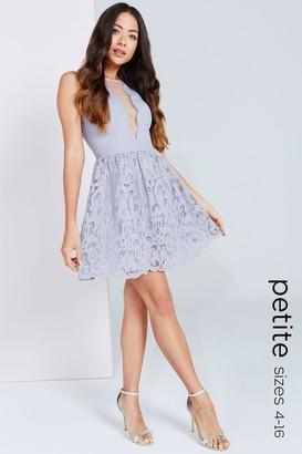 Petite Grey Scallop and Crochet Mini Dress