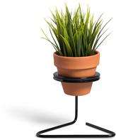 Suspended Planter Mini