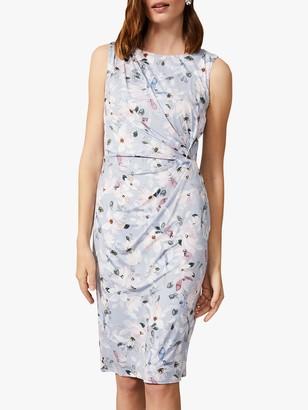 Phase Eight Etta Floral Print Jersey Dress