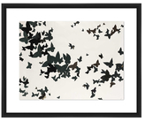 PTM Images Winged Flight (Shadow Box Frame)