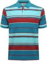 M&Co Stripe polo shirt