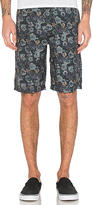 Publish Dante Shorts