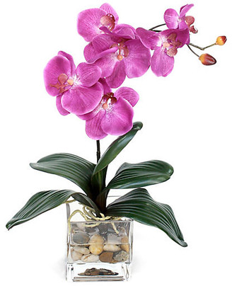 """One Kings Lane 18"""" Fuchsia Orchid with Vase - Faux"""
