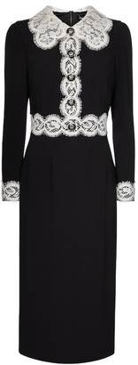 Dolce & Gabbana Lace-trimmed cady midi dress
