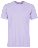 Colorful Standard - Soft Lavender Classic Organic Tee - S - Purple