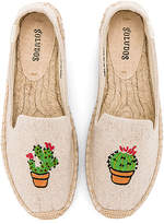 Soludos Cactus Platform