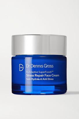 Dr. Dennis Gross Skincare Badaptive Superfoods Stress Repair Face Cream, 60ml - Colorless
