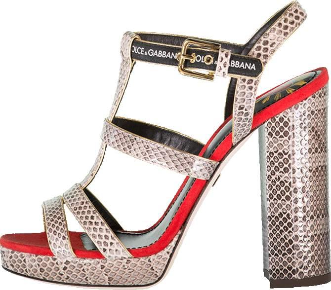 Dolce & Gabbana Ayers Sandal