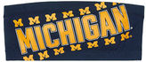 PINK University Of Michigan Bandeau Bra