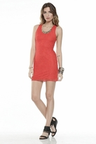 Lovers + Friends Shooting Stars Dress in Red Lace