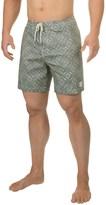 Globe Palmer Boardshorts (For Men)