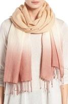 Eileen Fisher Ombré Wool & Silk Scarf