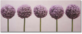 Graham & Brown 'Row Of Alliums' Photographic Print on Wrapped Canvas