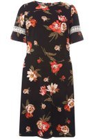 Dorothy Perkins Womens DP Curve Plus Size Black Floral Print Fit and Flare Dress- Black