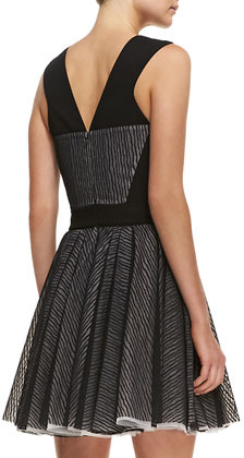 Robert Rodriguez Lace Zebra-Stripe Sleeveless Fit-and-Flare Dress