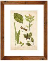 PTM Images Leaf Sheet II Wall Art