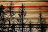 Parvez Taj ParvezTaj 'Trees Against Red Sky' by Painting Print