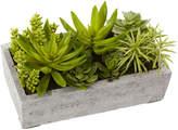 Asstd National Brand Nearly Natural Succulent Garden With Concrete Planter
