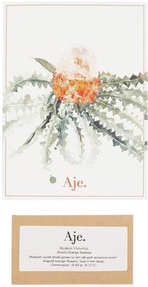 Aje Greeting Card