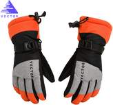 Vector Windproof Water Rebellent Winter Warm Thermal Snow Gloves Skiing Snowboarding Ski Gloves (M, )