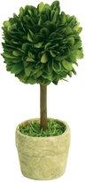 "Mills Floral Company Box Topiary, Single, Mini 2.5"" X 6"""