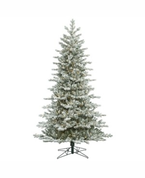 Vickerman 7.5' Frosted Eastern Frasier Fir Artificial Christmas Tree