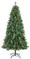 Philips 7ft Pre-Lit LED Artificial Christmas Tree Douglas Fir - White Lights
