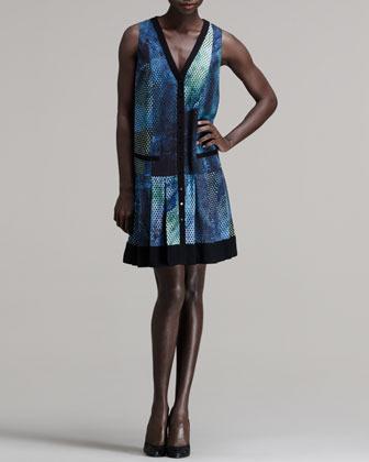 Proenza Schouler Printed Snap-Front Dress