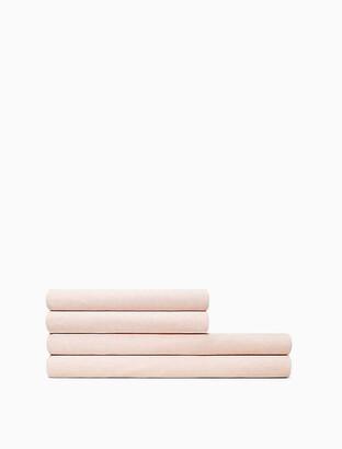 Calvin Klein Modern Cotton - Harrison Flat Sheet In Pink