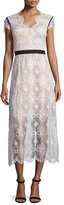 Catherine Deane Short-Sleeve Lace Midi Dress, Oyster/Almond