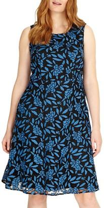 Studio 8 Natalie Dress, Blue/Black