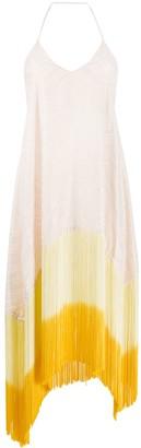 Antonella Rizza Iride fringed open-back dress