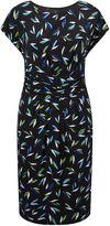 Adrianna Papell Multicolour cap sleeve leaf print dress