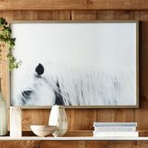 Framed Prints - Horses