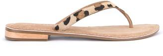 Mint Velvet Ellen Leopard Flip Flops - Multi