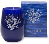 Primal Elements 13-oz. Blue Icon Candle - Coral