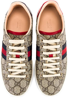 Gucci New Ace GG Sneakers in Beige Ebony & Red | FWRD