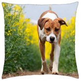 "iRocket - Dog - Throw Pillow Cover (20"" x 20"", 50cm x 50cm)"