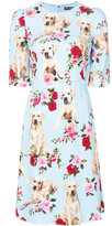 Dolce & Gabbana Mimmo printed cady dress