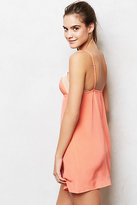 Anthropologie Crimson Blush Chemise