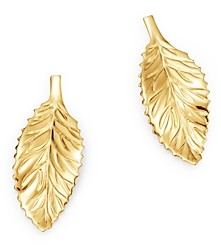 Bloomingdale's Curved Leaf Stud Earrings in 14K Yellow Gold - 100% Exclusive