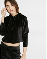Express One Eleven Abbreviated Velour Hoodie