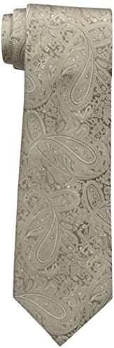 Countess Mara Men's Augustin Paisley 100% Silk Tie